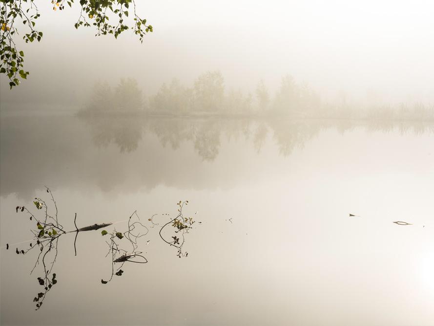 Lake Svarttjärn in autumn mist
