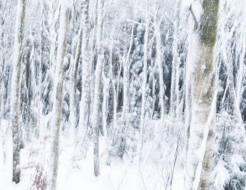 Winterland moment