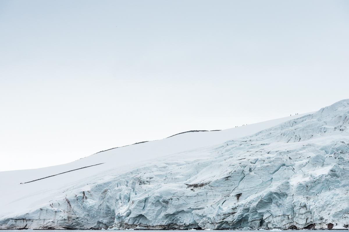 Walking in the arctic