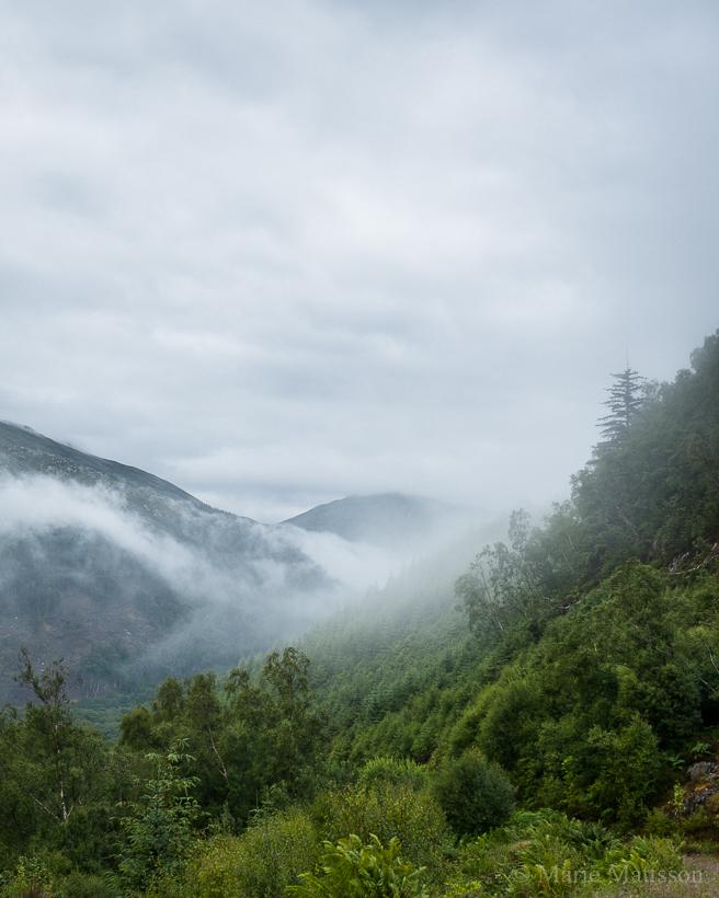 scotland_fog-3389