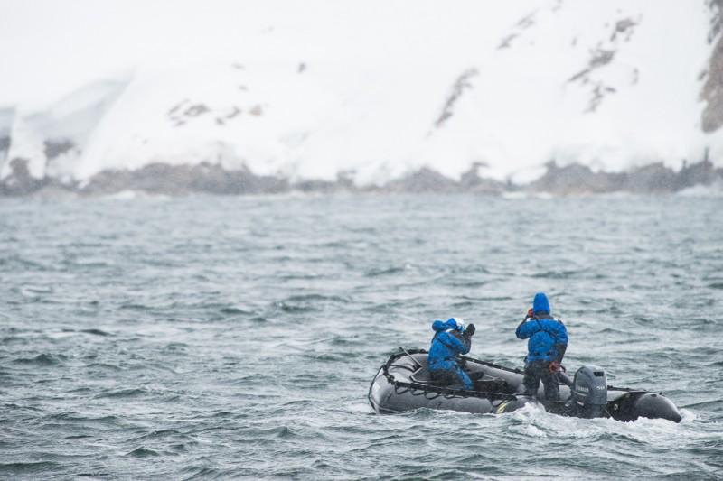 Våra guider Åsa och Oscar gör en rekningsrunda till björnarna igen för att se om det är värt att åka ut till dem ännu en gång. Men de snarkade vidare i snön. Björnarna alltså.
